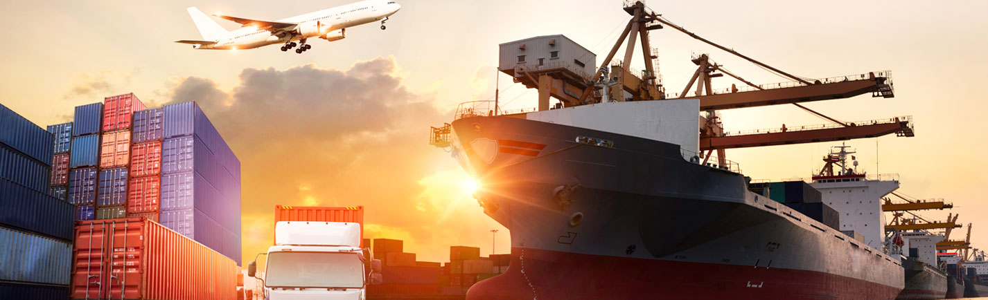 Dove Shipping International Inc > Home